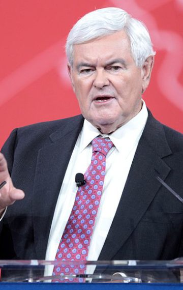 Gingrich and the roots of political polarization